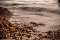 "Martin's Bay 7 (notnA) Tags: seascape ""seascape photography"" ""long exposure ""martin's bay"" barbados martins bay east coast"