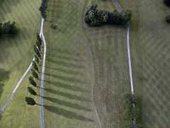 #95 Shadows and lines (Timster1973 - thanks for the 15 million views!) Tags: mavic drone uav quadcopter dji mavicprodrone djimavicpro fly up uphigh droneflying tim knifton timster1973 timknifton explore exploration perspective lookdown lookingdown color colour nature shadows shadow lines line tree trees natural outdoor outdoors wales welsh green high composition