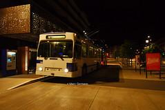 Trolleybus NAW BT-25 n°781 en service sur la ligne 6. © Marc Germann (Marc Germann) Tags: mercedes citado euro 6 articulé naw fbw retrobus autobus arbres route par brise remorques historic bus convois man deux étages bleu blanc soleil transportspublics transport car postal nuit jours transports lausannois