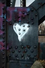 Love Under The Bridge (Bracus Triticum) Tags: love under the bridge alberta canada カナダ lethbridge アルバータ州 レスブリッジ 4月 四月 卯月 shigatsu uzuki unohanamonth 2018 平成30年 spring april
