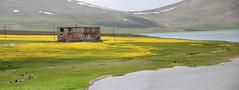 Balık gölü 5 (laedri52) Tags: balıkgölü fishlake ağrı agri doğu eastofturkey east eastern anatolian anadolu panaroma panorama panaromic panoramic taşlıçay göl lake