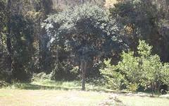 18 River Oak Crescent, Scotts Head NSW
