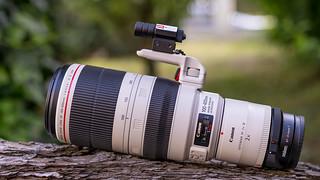Canon EF100~400/4.5~5.6L IS II USM & EF2x III on Metabones T Mark V seen by SONY ⍺7III & Sigma 50mm ƒf/1.4 DG HSM | Art on Sigma MC-11