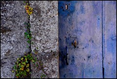 La Suze sur Sarthe (Sarthe) (gondardphilippe) Tags: lasuzesursarthe sarthe maine paysdelaloire mur wall porte bleu blue vert green herbes plante architecture couleurs colors door extérieur outdoor macro nature portail quiet rural ruralité texture symétrie zen ngc