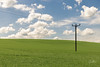Clouds (GaryBlack) Tags: grass wind landscape meadow weather prairie post fluffy summer summertime cloud pylon grassland sky clouds plain ecosystem energy field hungerford england unitedkingdom gb