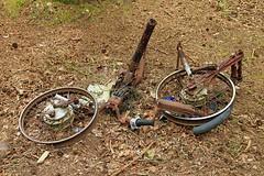 Some restoration required.... (BIKEPILOT, Thx for + 4,000,000 views) Tags: moped bike metal rust scrap wrecked mytchett surrey uk england britain vehicle transport