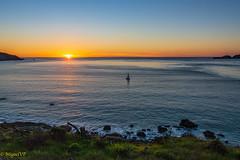 golden gate pacific ocean (MiguelVP) Tags: goldengate ocean sanfrancisco sunset sailing