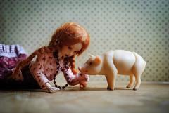 DSC_4654 (peregrina_tyss) Tags: pig movingdolls chucha happiness bjd obitsu haruka brynhild