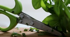 "Herb Scissors (francepar95) Tags: ""macromondays""and""handtool"" macro theme week herb scissors green plant basilic cooking"