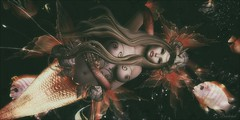 Koi Koi.... (bewitcheddifference) Tags: swank rp sexy mermaid irrisitable