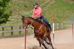 JBC_5490.jpg (Jim Babbage) Tags: krahc horseshow appaloosa horses 2018 bethany