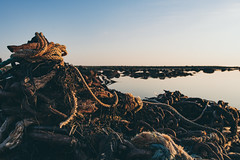 Old Ropes and Rusted Chains (Ivan Mæland) Tags: sea rust chain chains ocean sky sunset junk