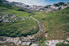 Monte Mongioie