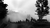 foggy morning (heinzkren) Tags: silhouette fog nebel sky himmel landschaft landscape schwarzweis bw sw blackandwhite monochrome austria steiermark styria tree wein vine wine ricoh mood stimmung nature natur clouds wolken weingarten vin vineyards