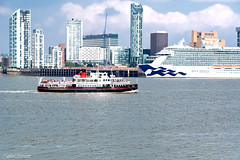 Royal Iris of The Mersey and the Royal Princess, Liverpool Waterfront Waterfront 10th June (Bob Edwards Photography - Picture Liverpool) Tags: boat ferry transportation vessel watercraft oceanliner ship cruiseship building officebuilding city highrise urban architecture skyscraper downtown spire steeple tower liverpool waterfront sky blue rivermersey royalliver bobedwardsphotography pictureliverpool