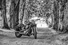 Custom at Kokon (aixcracker) Tags: motorcycle motorcykel moottoripyörä kokon borgå porvoo suomi finland june juni kesäkuu summer sommar kesä nikond800 lightroom blackwhite svartvit mustavalkoinen bw sv mv