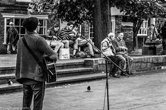 Music, lunch or a chat............. (steve.gombocz) Tags: zwart neroebianco sortoghvid mustavalkoinen svarthvitt svartoghvitt svartochhvitt pretoebranco noiretblanc schwarzundweiss negroyblanco noirblanc schwarzweiss negroblanco urbanstreet blacknwhite greyscale monochrome streetscene blackwhite bwphotos bwstreetscenes bw bwstreet flickrbw bwflickr blackwhitephotos blackwhitephotography flickrstreet blackwhitestreet streetlife street blackandwhite streetphotographs bwphotographs streetphotography streetbw photosinblackandwhite bwpictures flickraddicts purestreet outandabout streetpictures streetphotos flickr exploreflickr york yorkbw yorkscenes exploreyork flickryork music busker guitar people olympus olympususers olympusamateurs olympuszuikodigitalclub olympusm1240mmf28 olympusem5mark2 olympusomd