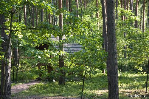 Шацький Національний Природний Парк Озеро Луки Перемут InterNetri  Ukraine 21