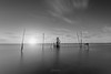 Redes III (javidurojimenez) Tags: delta ebro red redes net cataluña catalunya españa spain rio mar sea paisaje landscape seascape marina largaexposicion longexposure blancoynegro blackandwhite minimalismo efecto seda