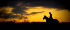 Noitezita (Eduardo Amorim) Tags: gaúcho gaúchos gaucho gauchos cavalos caballos horses chevaux cavalli pferde caballo horse cheval cavallo pferd crioulo criollo crioulos criollos cavalocrioulo cavaloscrioulos caballocriollo caballoscriollos pampa campanha pelotas costadoce riograndedosul brésil brasil sudamérica südamerika suramérica américadosul southamerica amériquedusud americameridionale américadelsur americadelsud cavalo 馬 حصان 马 лошадь ঘোড়া 말 סוס ม้า häst hest hevonen άλογο brazil eduardoamorim
