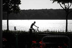 Krk-4749.jpg (harleyxxl) Tags: fahrrad punat primorskogoranskažupanija kroatien hr