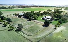 'Springdale Stud', Fish Fossil Drive, Canowindra NSW