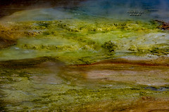 colors of life (mariola aga OFF) Tags: yellowstonenationalpark wyoming midwaygeyserbasin excelsiorgeyser algae green slime colorsoflife closeup abstract nature coth coth5 thegalaxy