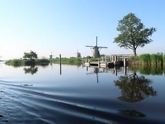 Kinderdijk, Holland (iyk314159) Tags: windmill tree reflection water holland kinderdijk