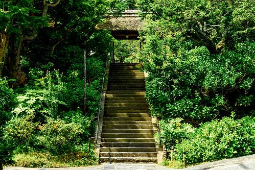 Main Gate of Tokeiji Temple, Kamakura : 北鎌倉・東慶寺 山門