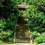 Main Gate of Tokeiji Temple, Kamakura : 北鎌倉・東慶寺 山門 thumbnail