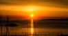 Color Explosion (evakongshavn) Tags: sunset sun raysoflight rays light orange evavision golden goldenscape goldenlight yellow ocean oceanscape sunsetocean sunsetsocean sea seascape sealine seashore seagull bird haugesund visithaugesund mittrogaland norge norway