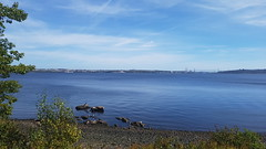 Bedford Basin, Nova Scotia (Fred:) Tags: novascotia bedfordbasin water bedford basin halifax hrm eau nature paysage train ride travel blue bleu ciel sky nova scotia canada dartmouth cheminées cheminée chimney chimneys plant shore