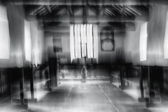 apparition (Dr Kippy) Tags: icm intentionalcameramovement mono monochrome blackandwhite bw canon100d canon canonefs24mmf28