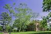 Brooks Hall, Dept. of Anthropology, University of Virginia (TAC.Photography) Tags: u0fv universityofvirginia sycamore college campus brookshall anthropology tacphotography tomclarknet