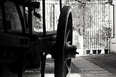 Museo del Vino 🍇🍷 #delauvalamesa #wine #viñas #vitivinicultura #grapes #troubes #vendimia #palominofino #px (marta.toes87) Tags: grapes troubes wine delauvalamesa vitivinicultura px viñas vendimia palominofino