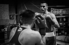 31194 - Face Off (Diego Rosato) Tags: boxe boxing pugilato boxelatina ring match incontro bianconero blackwhite nikon d700 tamron 2470mm face off
