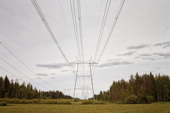 Power Lines Leading To The Horizon (k009034) Tags: 500px trees copy space finland tranquil scene agriculture cable clouds countryside fields forest horizon over land leading lines nature no people overcast power line rural sky steel summer tall tower teamcanon copyspace tranquilscene horizonoverland leadinglines nopeople powerline
