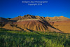 Yellow Mounds, Badlands National Park (Bridget Calip - Alluring Images) Tags: 2018 alluringimagescolorado america badlandsnationalpark bridgetcalip llc mountains nationalpark southdakota usa arid canyon desertcandles desolate dry ecology empty endless environment erosion fossils geologicalformation grass grasslands habitat hot land landscape meadow peaceful prairie remote sandstonerockformations scenery scenicdrive solitude spring stark strata stunning terrain tourism traveldestination vacation vast vegetation wavesofgrain wilderness wind windswept yellowmounds