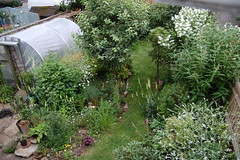 Looking Down on the Back Garden - June 2018 (basswulf) Tags: backgarden polytunnel d40 1855mmf3556g lenstagged unmodified 32 image:ratio=32 permissions:licence=c 20180617 201806 3008x2000 lookingdownonthegarden garden normcres oxford england uk
