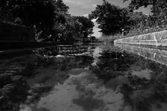 Reflections (Arnaud Gabriel) Tags: pfe paysage paysagiste paca usine friche ensp marseille marseilleveyre calanques canal eau
