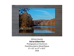 """Fall at Gilbert Run (2) • <a style=""""font-size:0.8em;"""" href=""""https://www.flickr.com/photos/124378531@N04/27777184717/"""" target=""""_blank"""">View on Flickr</a>"""
