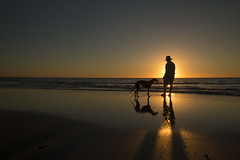 A boy and his girl (alideniese) Tags: landscape waterscape seascape sea ocean water man dog silhouette sunset sun sundown dusk evening beach coast coastline shoreline westbeach adelaide southaustralia northglenelg australia alideniese human fauna light shadow reflections