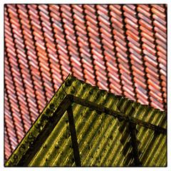 Leinach - roofs (Armin Fuchs) Tags: arminfuchs leinach würzburg roof red green diagonal