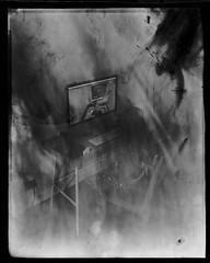 Intrepid (8x10) 2018 06 18 (Sibokk) Tags: 8x10 anna bw camera film intrepid mono photography scotland uk xray contactprint edinburgh fogatron