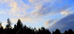 Looking West (rve13) Tags: wetland sunset cloudsstormssunsetssunrises galaxys9