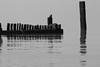 Beach Furniture (MrAlbionMan) Tags: hunstanton norfolk beach sea water breakwater blackandwhite