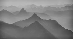 morning mist at Vitznauerstock (judith.kuhn) Tags: nature natur landscape lanschaft berge mountain hills hügel travel reise schweiz switzerland luzern obwalden nidwalden pilatus silhouette dunst nebel mist dust fog gross mythen vitznauerstock monochrome