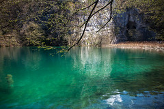 Plitvice Lakes National Park, Croatia (Cyrielle Beaubois) Tags: 2017 canoneos5dmarkii croatia cyriellebeaubois avril spring travel voyage plitvice nationalpark travelphotography water lake river clearwater turquoise branch leaves green transparent canonef28mm18 explore wanderlust wander