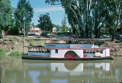 8203B-09 (Geelong & South Western Rail Heritage Society) Tags: aus australia canberra echuca moama murray river victoria paddlesteamer