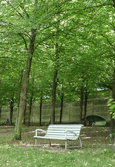Bench under the trees in Parc de Bercy, Paris (Monceau) Tags: bench trees parcdebercy green